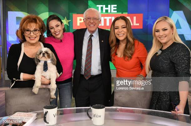 THE VIEW Senator Bernie Sanders is the guest today Monday November 26 2018 The View airs MondayFriday on the Walt Disney Television via Getty Images...