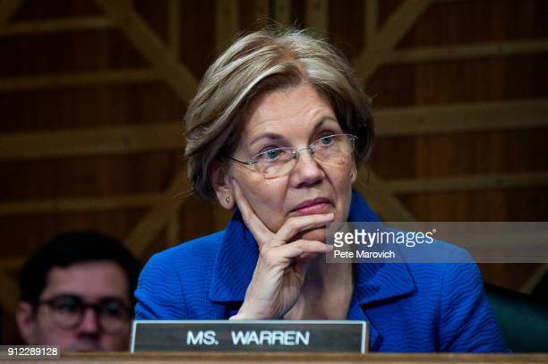 Senator Elizabeth Warren listens as Treasury Secretary Steven Mnuchin delivers the annual financial stability report to the Senate Banking Housing...