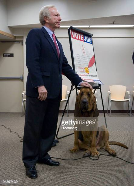 S Senator Joe Lieberman campaigns with a bloodhound named Jesse at the Tower One/Tower East senior housing complex in New Haven Connecticut Monday...