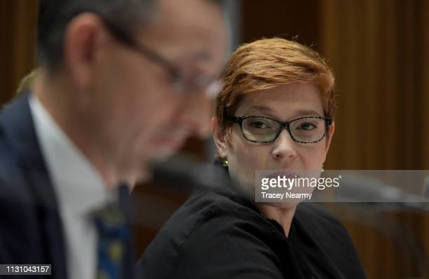 Senator Marise Payne gestures during Senate Estimates for Foreign Affairs, Defence and Trade Legislation Committee at Parliament House on February...