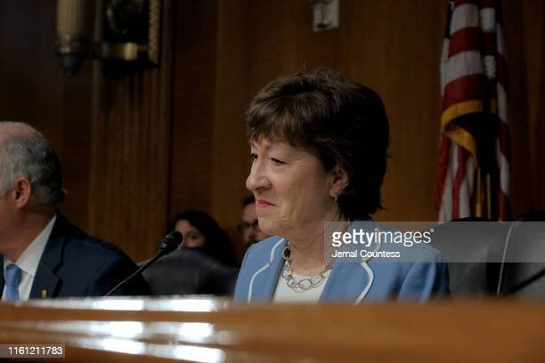 Senator Susan Collins speaks at the hearing on Type 1 Diabetes at the Dirksen Senate Office Building on July 10, 2019 in Washington, DC.