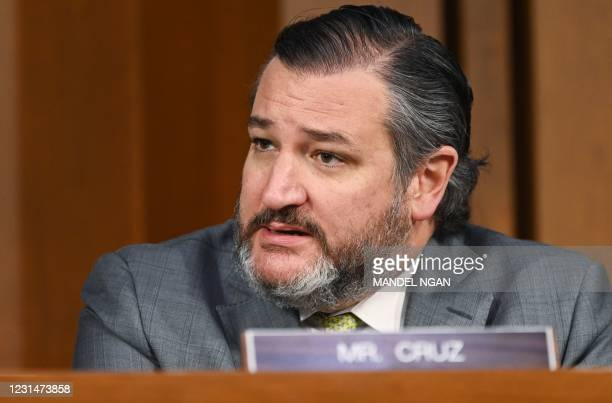 Senator Ted Cruz, R-TX, speaks as FBI Director Christopher Wray testifies before the Senate Judiciary Committee on the January 6th insurrection, in...