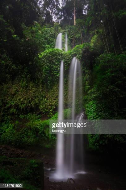 sendang gile waterfall,lombok - lombok fotografías e imágenes de stock
