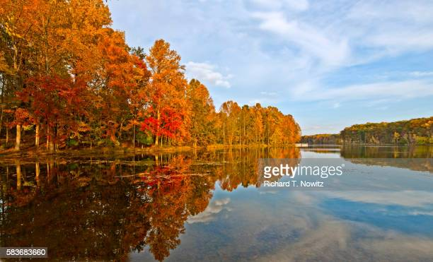 seneca creek state park - maryland us state stock pictures, royalty-free photos & images