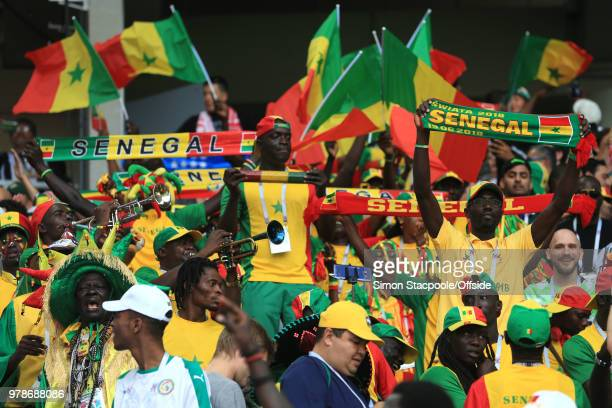 Senegal fans celebrate with scarfs and flags as their team go 10 up during the 2018 FIFA World Cup Russia group H match between Poland and Senegal at...