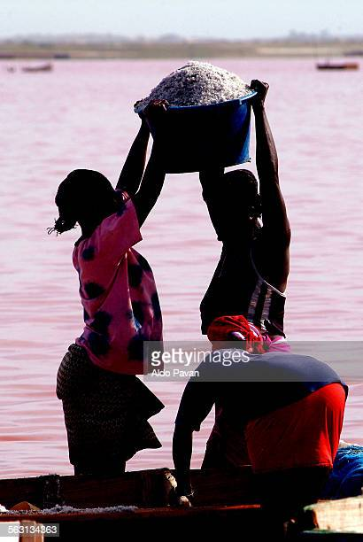 Senegal, Lac Rose, digging salt