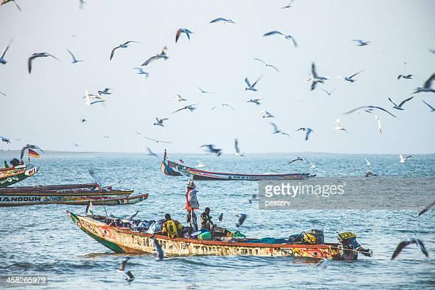 senegalês e gambiano barcos de pesca. - senegal - fotografias e filmes do acervo