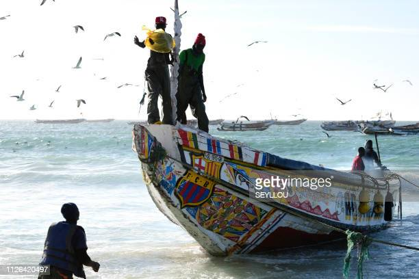 A Senegalese fishing pirogue arrives on January 29 2019 in Nouakchott fishing harbour as an agreement has been reached to allow Senegalese fishermen...