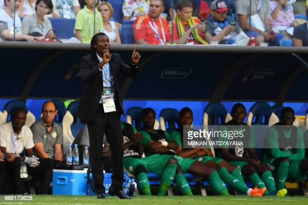 Senegal's coach Aliou Cisse gestures during the Russia 2018 World Cup Group H football match between Senegal and Colombia at the Samara Arena in...