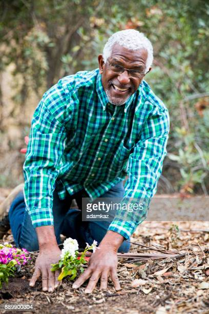 Senior African American Man Planting in the Garden