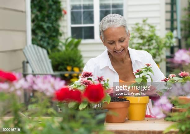 Senior African American woman gardening
