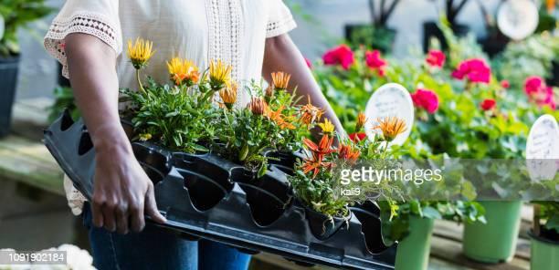 senior african-american woman shopping in garden center - garden center stock pictures, royalty-free photos & images