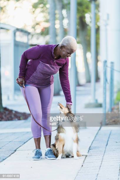 senior african-american woman walking dog - dog walker stock photos and pictures