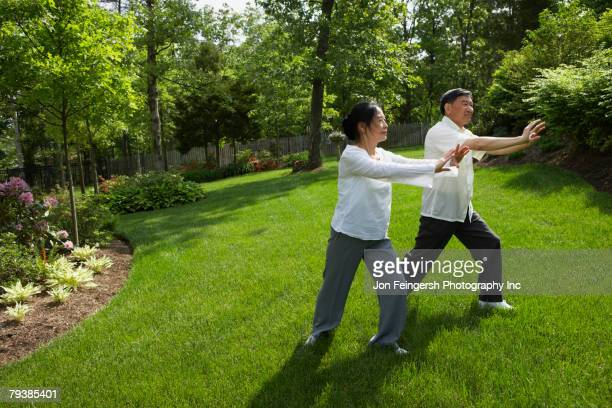 Senior Asian couple practicing tai chi