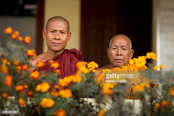 senior buddhistic monks with flowers - merten snijders - fotografias e filmes do acervo