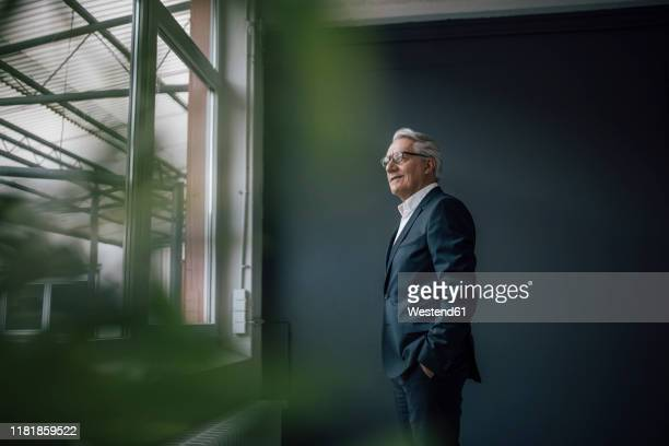 senior businessman looking out of the window - grey suit stock pictures, royalty-free photos & images