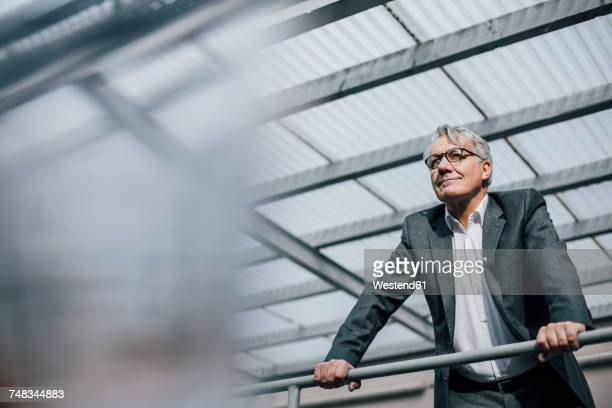 senior businessman standing at railing - respekt stock-fotos und bilder