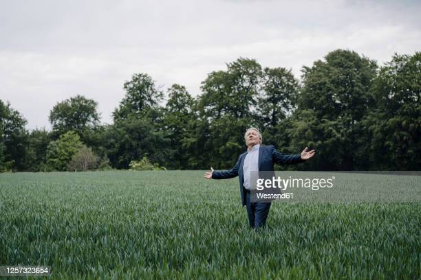 senior businessman standing on a field in the countryside with outstretched arms - arms outstretched stock pictures, royalty-free photos & images