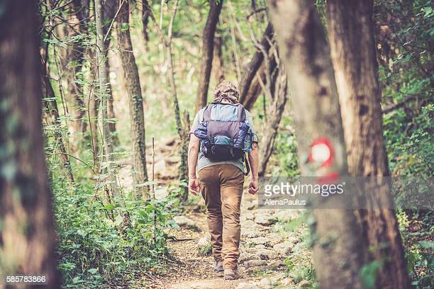 Senior caucasian man back view  - Mountaineer walking in forest