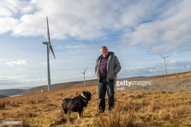 senior caucasian man with dog on welsh moorland - windmill stock pictures, royalty-free photos & images