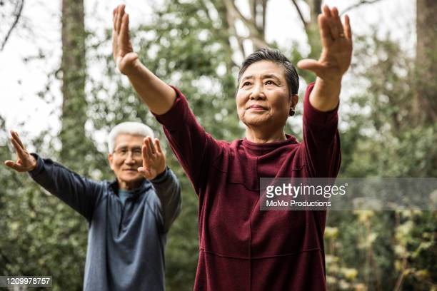 senior couple doing tai chi outdoors - estilo de vida ativo imagens e fotografias de stock