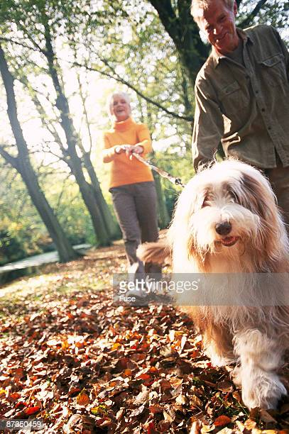 Senior couple going for a walk with dog
