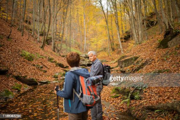 senior couple going hiking in forest on mountain - miljko stock pictures, royalty-free photos & images