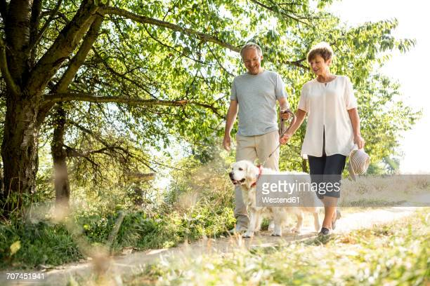 senior couple going walkies with dog - monogamous animal behavior stock photos and pictures