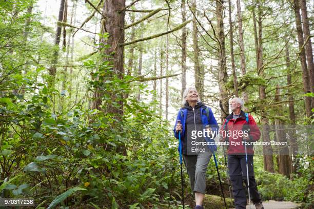 senior couple hiking along trail in forest - outdoor pursuit stock pictures, royalty-free photos & images