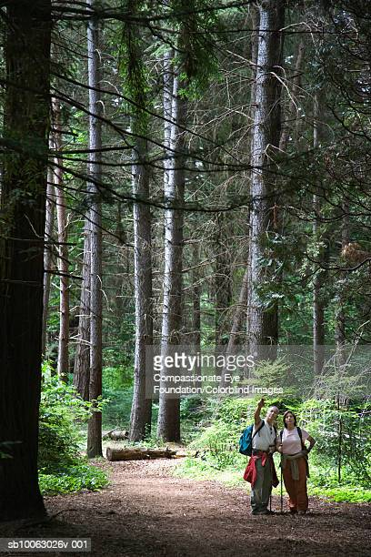 """senior couple hiking in woods - """"compassionate eye"""" stock pictures, royalty-free photos & images"""