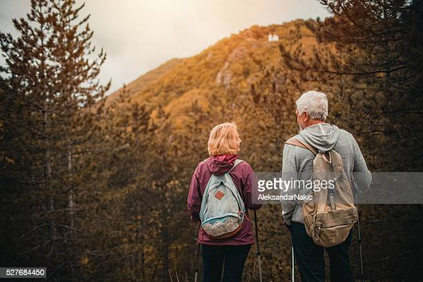 senior couple hiking - fall back stock photos and pictures