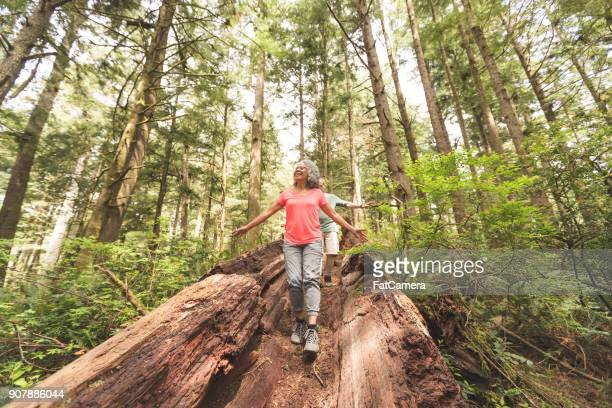 senior couple hiking trip - pacific northwest stock pictures, royalty-free photos & images