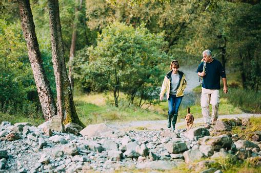 Senior Couple Hiking with Dog 915661956