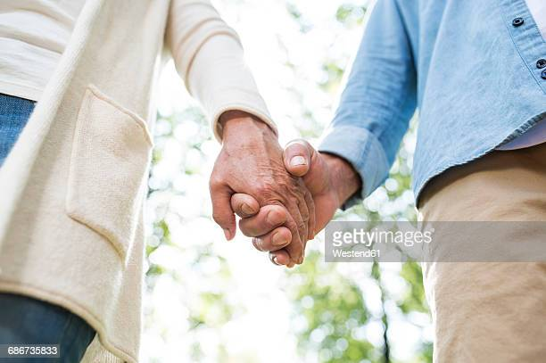 senior couple holding hands in nature, partial view - holding hands stock pictures, royalty-free photos & images