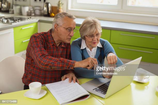 Senior couple is using laptop to organize their finances.
