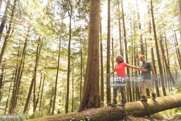 senior couple on a day hike in forest - naughty america stock pictures, royalty-free photos & images