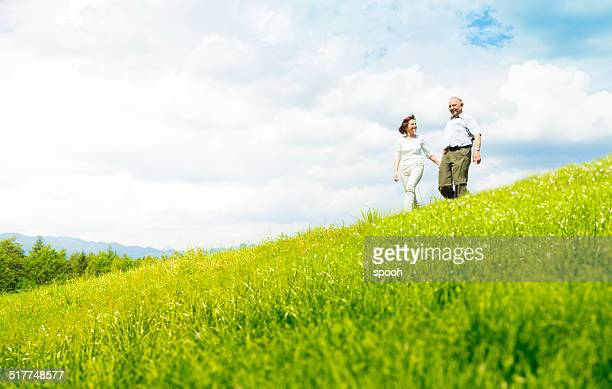 Altes Paar auf einer Wiese
