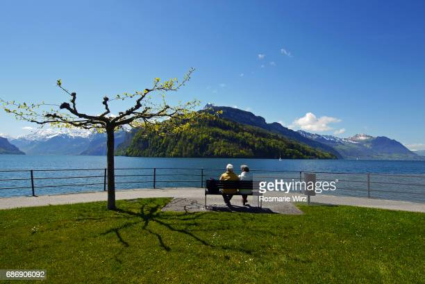 senior couple on bench admiring mountain panorama - schwyz stock pictures, royalty-free photos & images