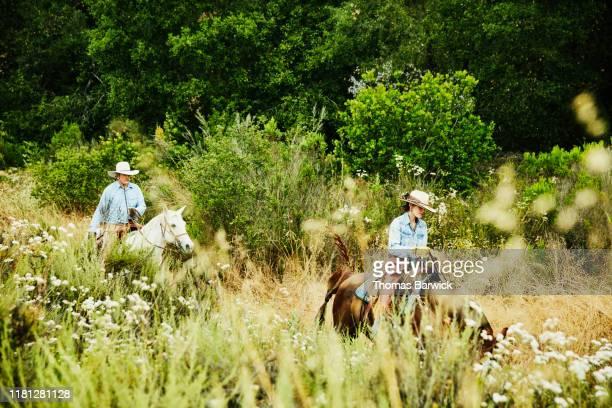 Senior couple on early morning horseback ride