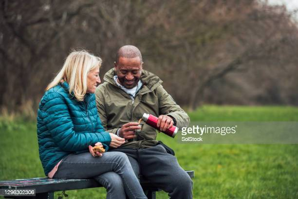 senior couple picnic in the park - multiracial group stock pictures, royalty-free photos & images