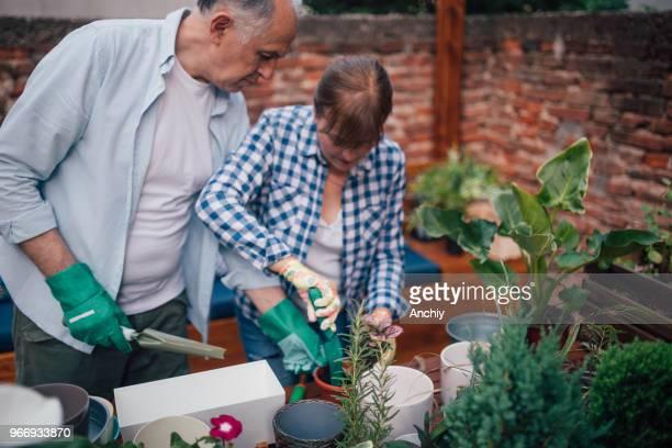 Senior couple planting