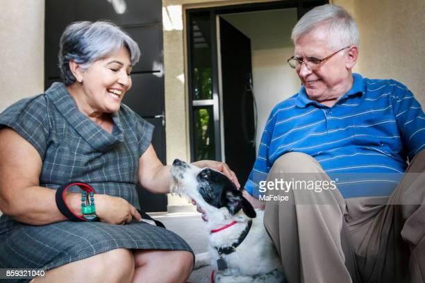Senior couple playing with dog