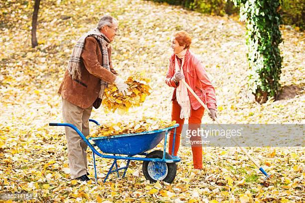 senior couple raking leaves. - rake stock pictures, royalty-free photos & images