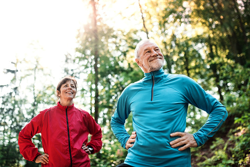 Senior couple runners standing outdoors in the forest in nature, arms on hips. - gettyimageskorea