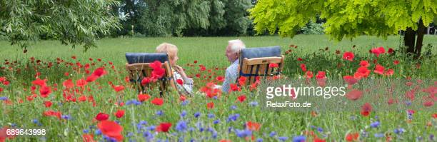 Senior couple sitting on garden chair in blooming meadow