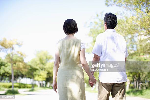 Senior couple taking a walk hand in hand, rear view