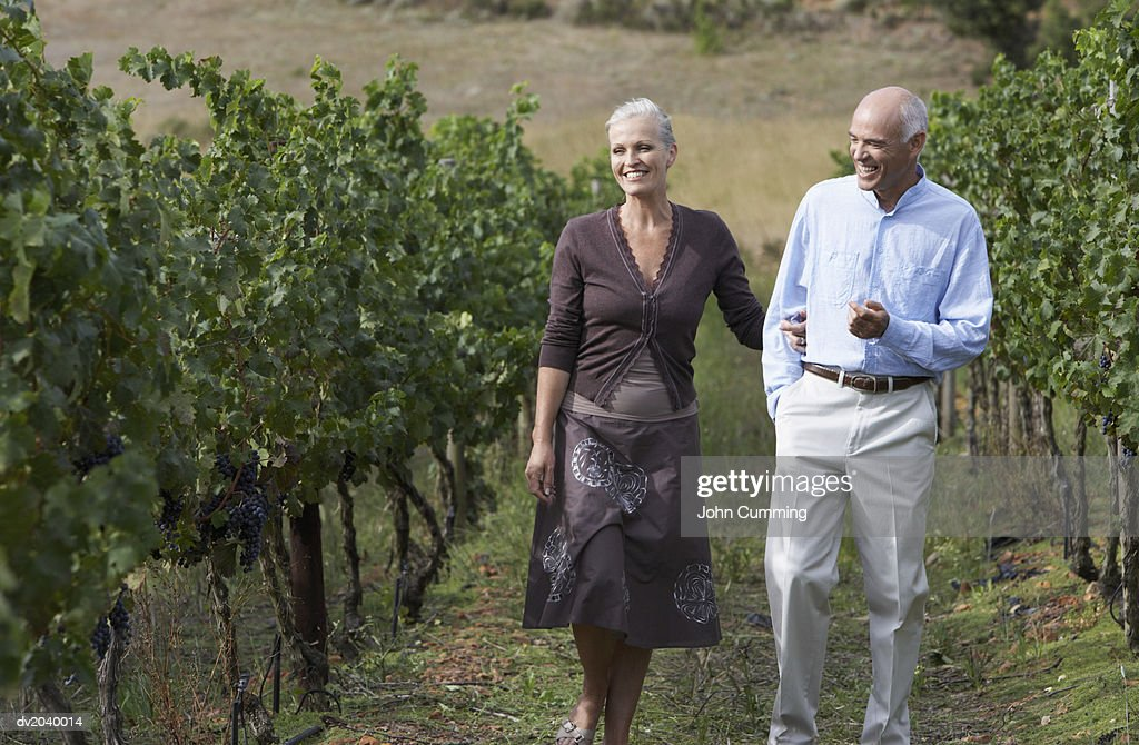 Senior Couple Walking Arm in Arm in a Vineyard : Stock Photo