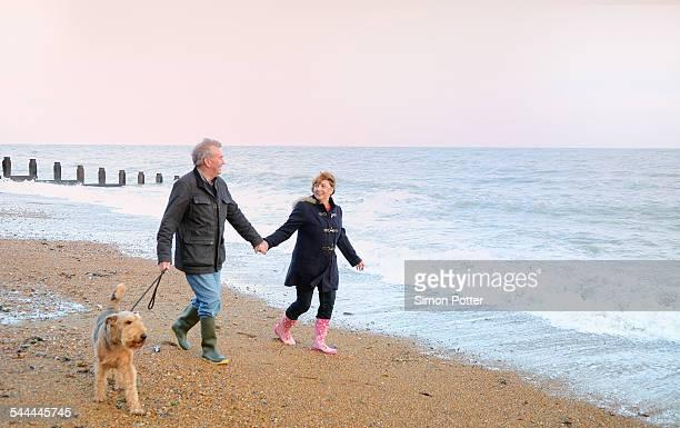 Senior couple walking dog on beach