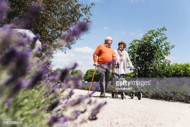 Senior couple walking in park, woman using wheeled walker
