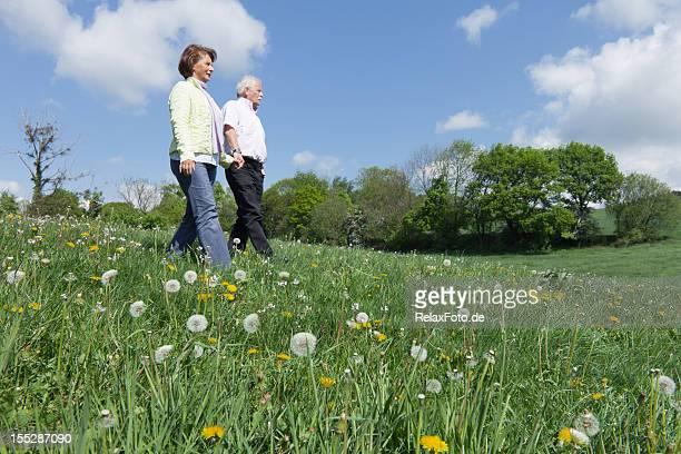 Altes Paar walking auf blühenden Wiese im Frühling
